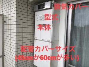 IMG_0845